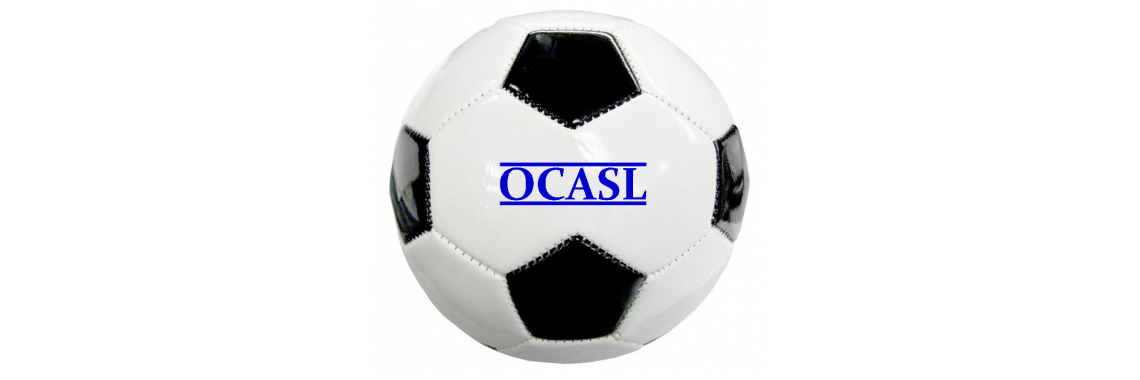 OCASL Mini Soccer Ball